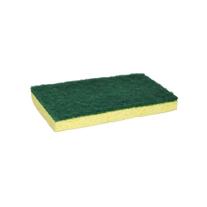 Sponge with Green Backing Pad