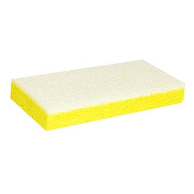 Sponge with White Backing Pad