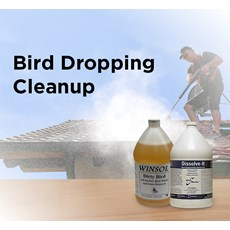 Bird Dropping Cleanup